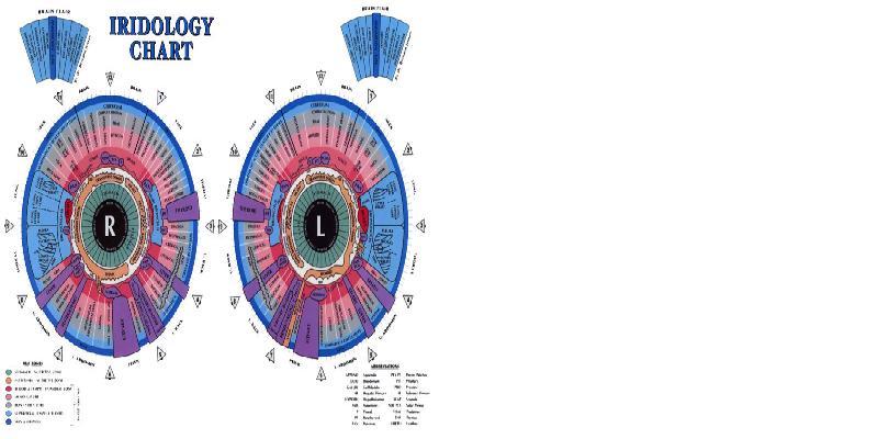 chart to iridology