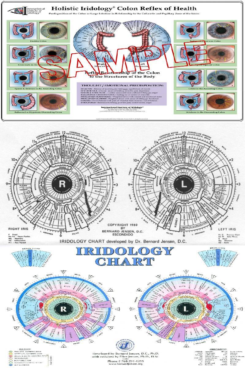vitamins & minerals chart