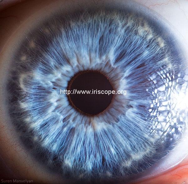 21 Extreme Close Ups of the Human Eye 5