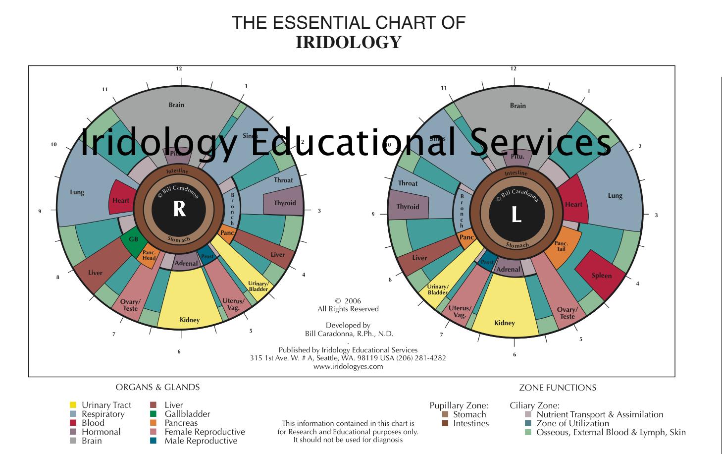 THE ESSENTIAL CHART OF IRIDOLOGY