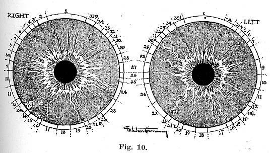 Fig.10.lg