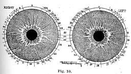 Fig.10.sm
