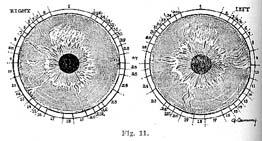 Fig.11.sm