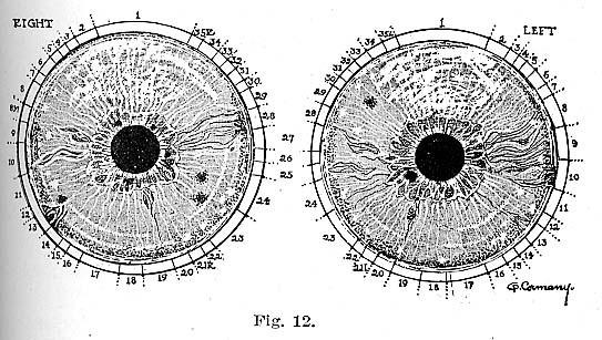 Fig.12.lg