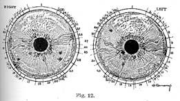 Fig.12.sm