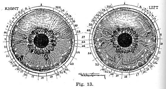 Fig.13.lg