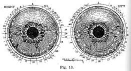 Fig.13.sm