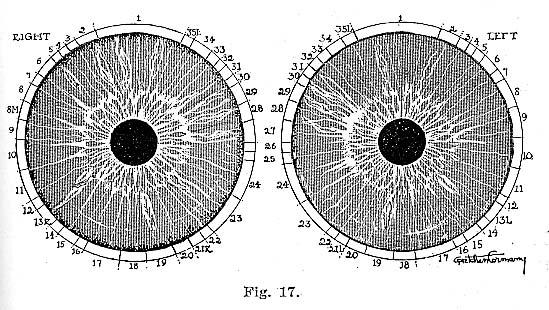 Fig.17.lg