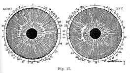 Fig.17.sm
