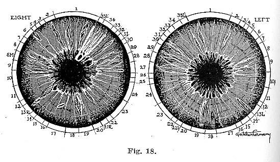 Fig.18.lg