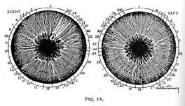 Fig.18.sm