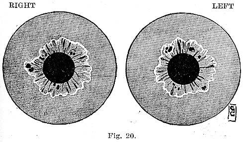 Fig.20.lg