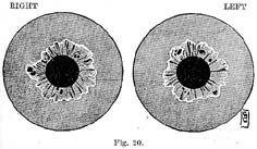 Fig.20.sm