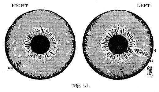 Fig.21.lg