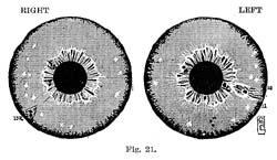 Fig.21.sm