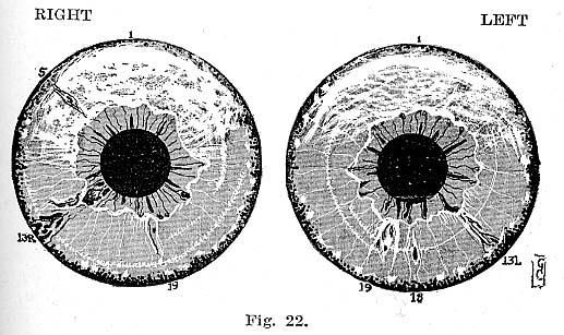Fig.22.lg