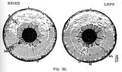 Fig.22.sm