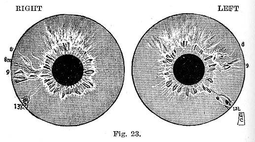 Fig.23.lg