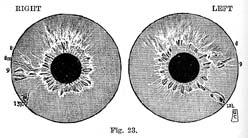 Fig.23.sm