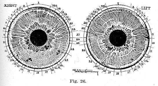 Fig.26.lg