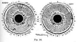 Fig.26.sm