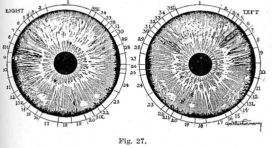 Fig.27.lg