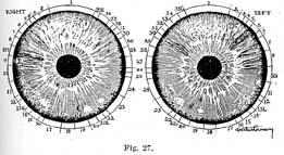 Fig.27.sm