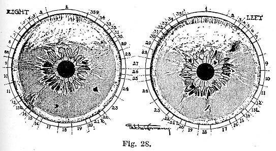 Fig.28.lg