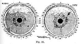 Fig.28.sm