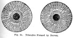 Fig.4a.sm