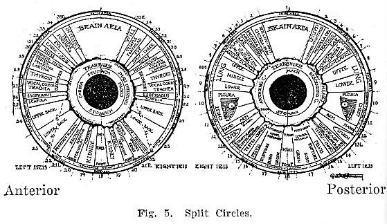 Fig.5.lg