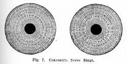 Fig.7.sm