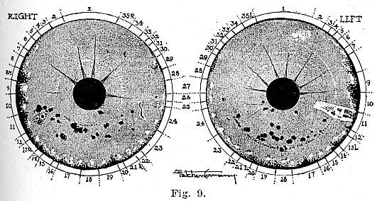 Fig.9.lg