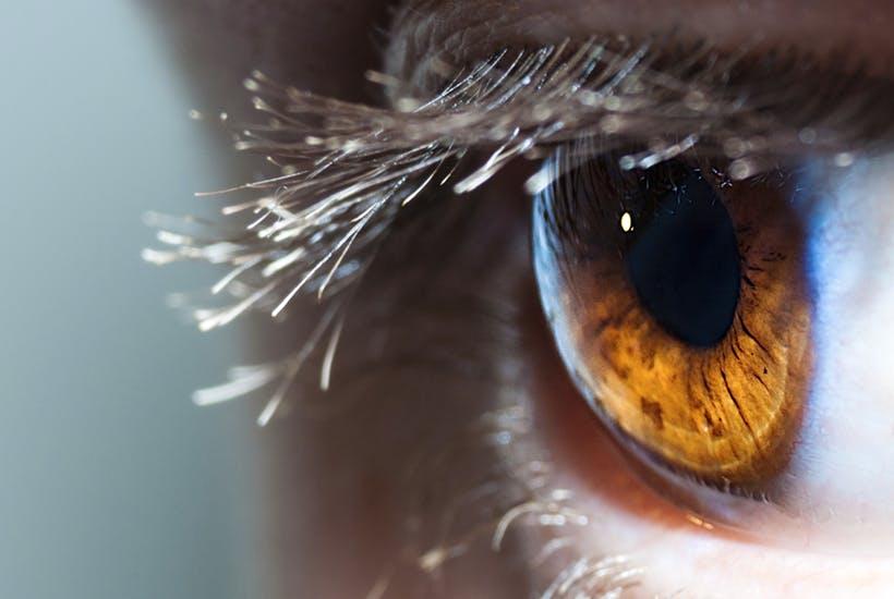 iridology eye