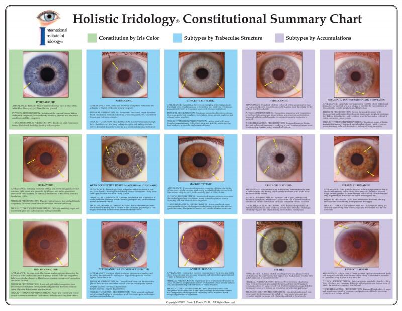 iridology reading report 4