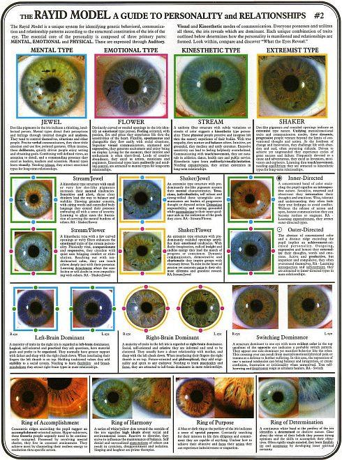 rayid iridology 13