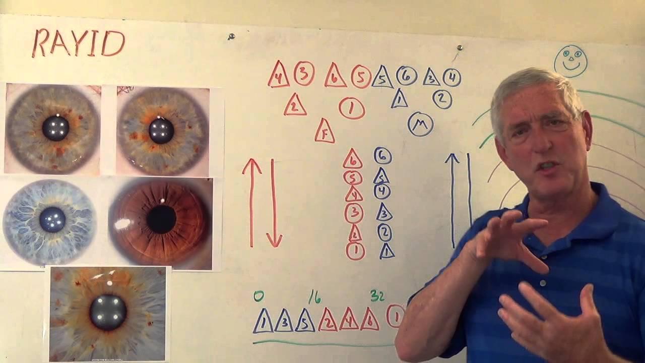 rayid iridology class