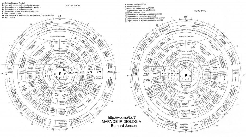 iridology charts mapa-iris-profundo