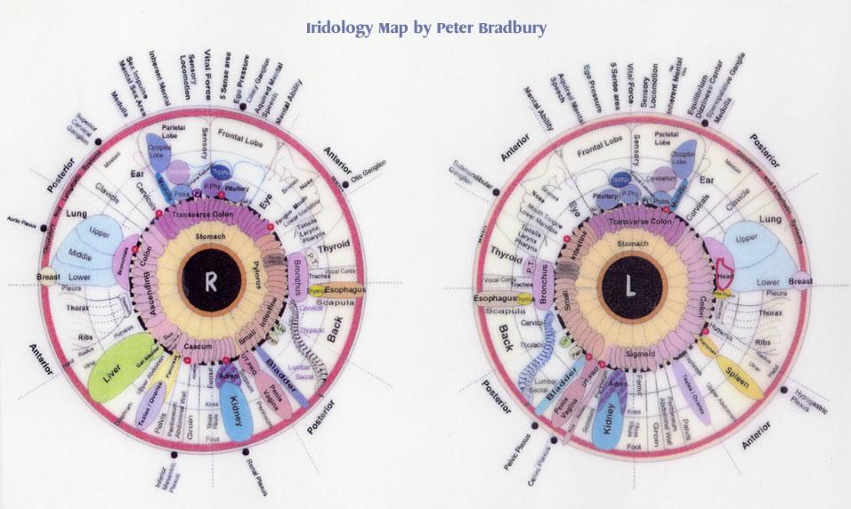 eye body chart