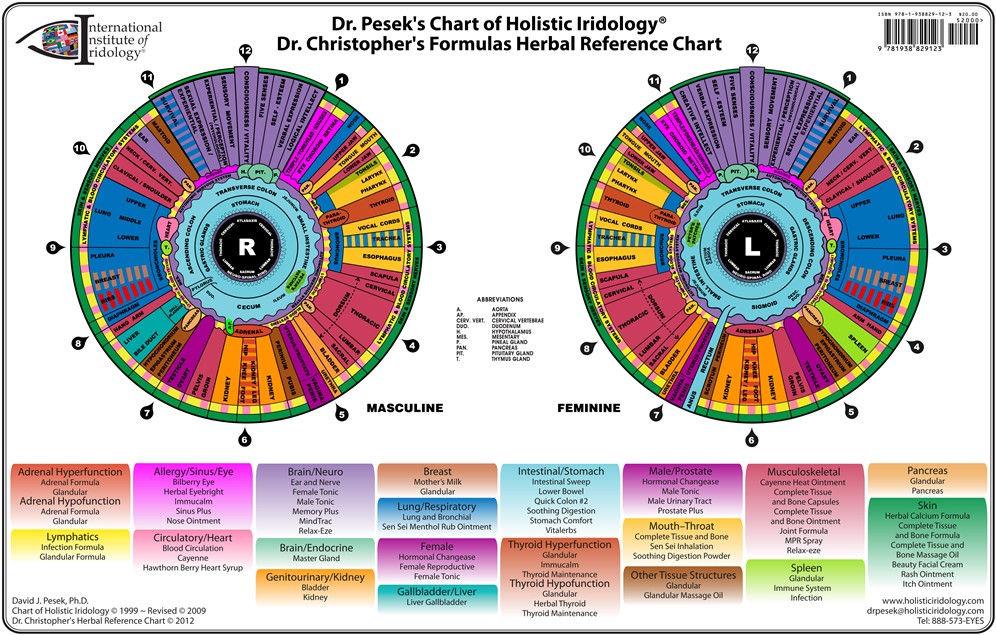 iris chart