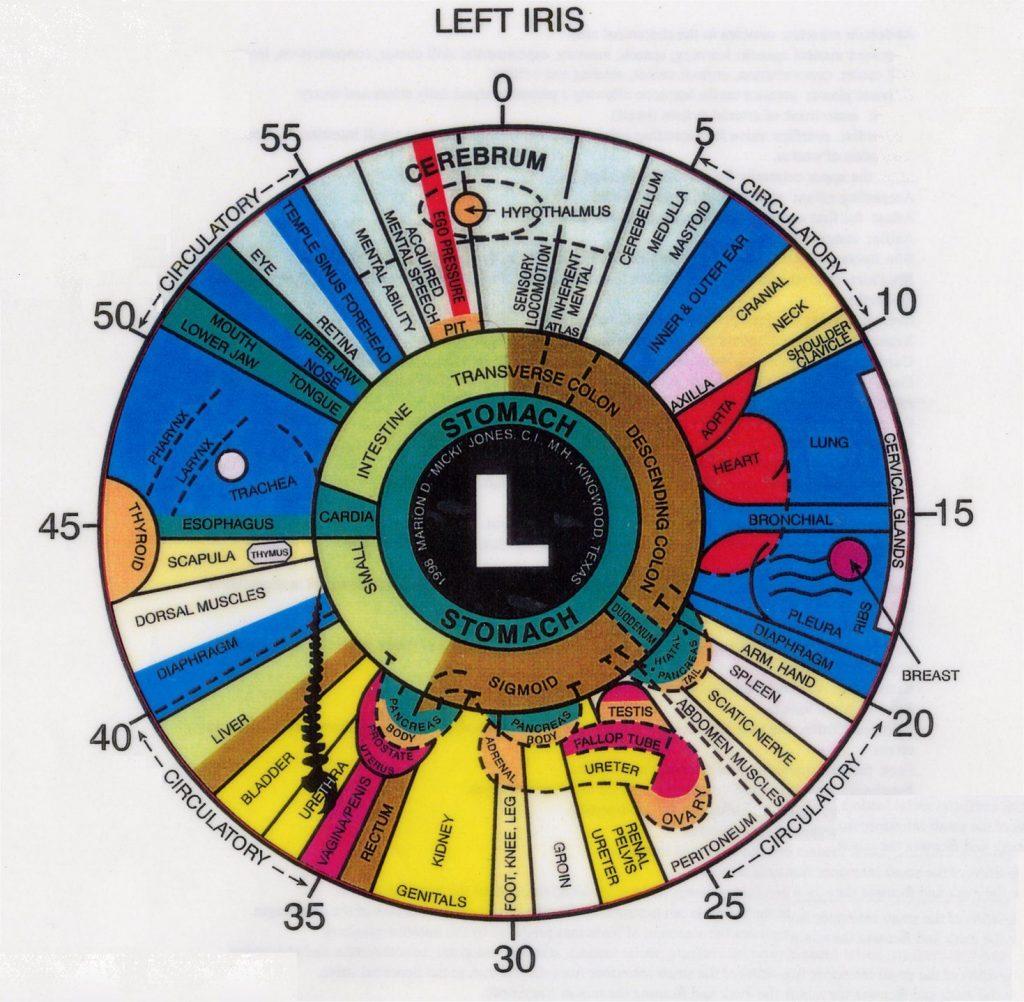 iridology eye chart left