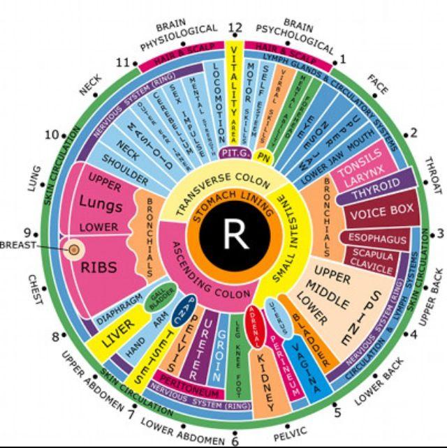 iridology eye chart righ