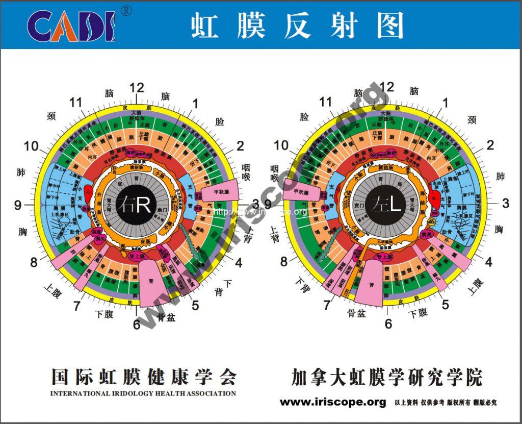 chinese eye diagnosis chart