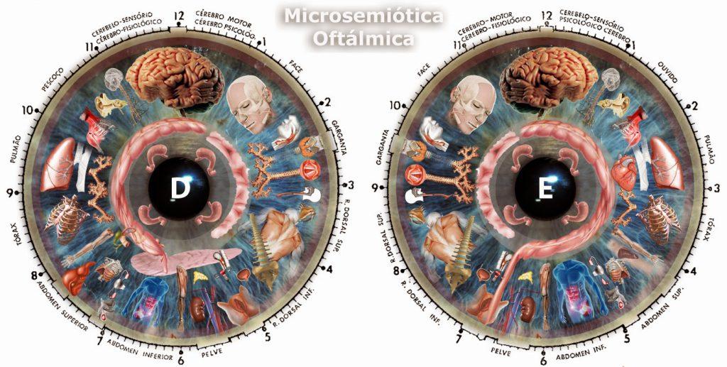 eye reflexology chart