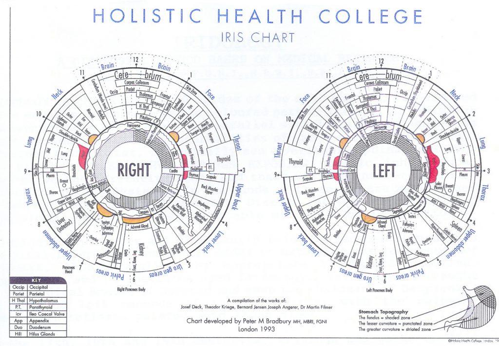 how to read iridology eye charts